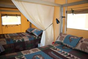 Luxury Queen Yurt with Two Queen Beds