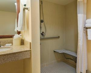 King Suite - Disability Access/ Hearing Accessible with Roll In Shower - Non-Smoking
