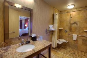 King Room Roll-In-Shower Hearing Access- Non-Smoking