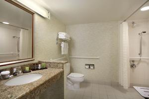King Suite with Roll-In Bath - Disability Access/Non-Smoking