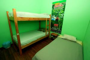 Bunk Bed in Mixed Dormitory Room 8