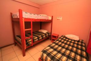 Bunk Bed in Mixed Dormitory Room 5