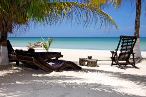 Photo of La Palapa By Xperience Hotels