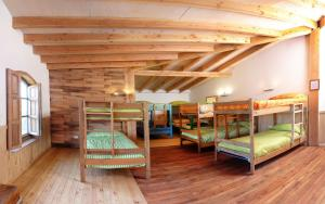 Single Bed in Mixed Dormitory Room - Puesco