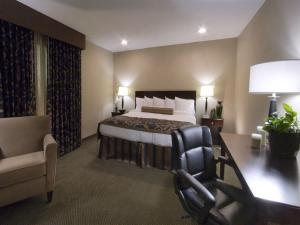 Deluxe King Suite with Spa Bath - Non smoking