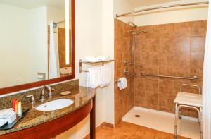 King Suite - Mobility Access/Roll-In Shower