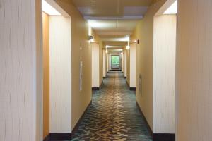Pigeon River Inn, Hotely  Pigeon Forge - big - 34