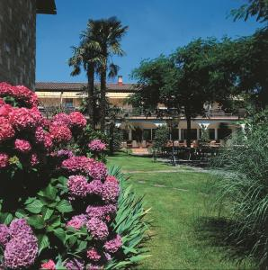 Hotel Mimosa