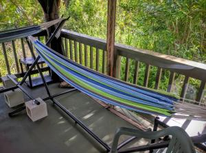 Single Hammock in Coed Outdoor Dorm