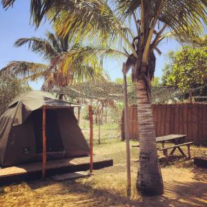 Mozambeat Motel, Hostely  Praia do Tofo - big - 43