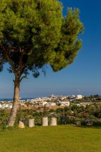 mimar villa altea, Vily  Altea - big - 45