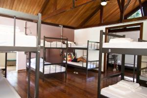 Single Bed in 16-Bed Dormitory Room