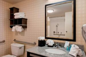 Hampton Inn & Suites Detroit/Airport Romulus, Hotely  Romulus - big - 3