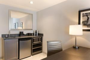 One-Bedroom Premium King Suite