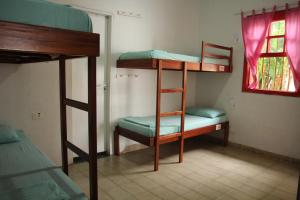Bunk Bed in 10-Bed Female Dormitory Room