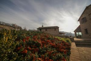 Country House Ca' Brunello, Holiday homes  Urbino - big - 17