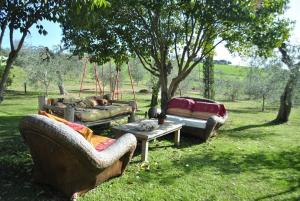 Affittacamere Artemisia, Bed & Breakfast  Magliano in Toscana - big - 10