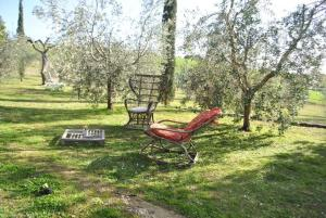Affittacamere Artemisia, Bed & Breakfast  Magliano in Toscana - big - 13