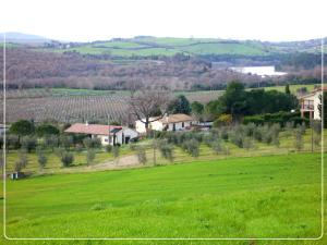 Affittacamere Artemisia, Bed & Breakfast  Magliano in Toscana - big - 11