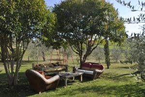 Affittacamere Artemisia, Bed & Breakfast  Magliano in Toscana - big - 1