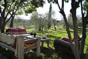 Affittacamere Artemisia, Bed & Breakfast  Magliano in Toscana - big - 22