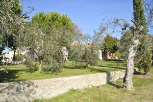 Affittacamere Artemisia, Bed & Breakfast  Magliano in Toscana - big - 20