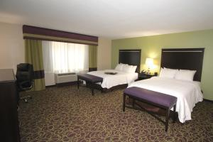 Queen Room with Two Queen Beds - Mobility/Hearing Access with Roll-In Shower