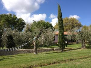 Affittacamere Artemisia, Bed & Breakfast  Magliano in Toscana - big - 21