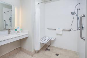 King Room - Disability Access Roll in Shower