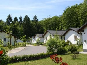 Holiday home Eifelpark 4
