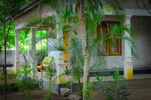Paradise Guest House, Guest houses  Habarana - big - 79