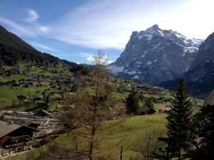 Apartment Chalet Judith, Appartamenti  Grindelwald - big - 20