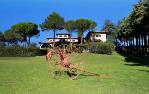 Agriturismo Anna De Croy, Farm stays  Magliano in Toscana - big - 21