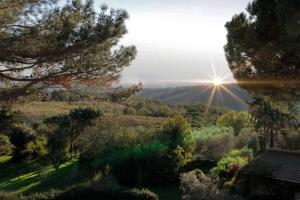 Agriturismo Anna De Croy, Farm stays  Magliano in Toscana - big - 5
