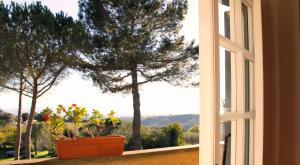 Agriturismo Anna De Croy, Farm stays  Magliano in Toscana - big - 35