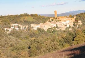 Agriturismo Anna De Croy, Farm stays  Magliano in Toscana - big - 11