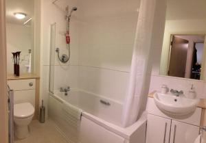 Riverside Apartment in Copper Quarter, Apartmány  Swansea - big - 13