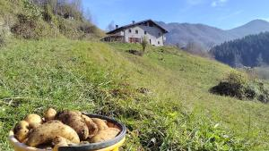 Country House Cascina Cornella
