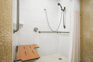 King Room Mobility/Hearing Accessible/Non-Smoking with Roll-In Shower