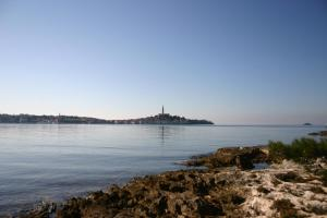 Rovinj One-Bedroom Apartment 2, Apartmány  Polari - big - 10