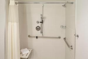 Queen Suite Disability/Hearing Access with Roll-in Shower