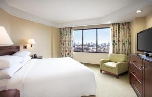 King Suite with View