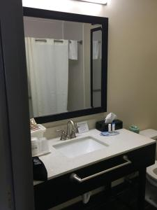 King Room with Bathtub - Disability Access/Pet-Friendly