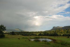 Treadridge, Holiday homes  Drakensberg Garden - big - 8
