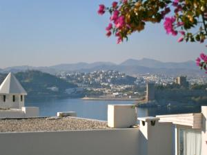 Bodrum Vista Suites, Apartmány  Bodrum City - big - 61