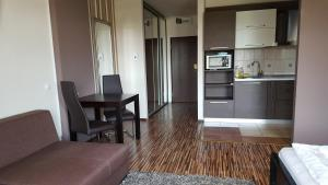 Grand'Or Studio Apartments, Apartmány  Oradea - big - 20