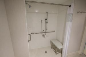 King  Room with Roll In Shower - Mobility Access/Non-Smoking
