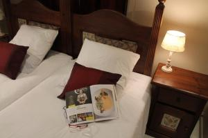 B&B Villa Egmont, Bed & Breakfast  Zottegem - big - 40