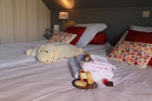 B&B Villa Egmont, Bed & Breakfast  Zottegem - big - 54