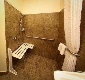 Queen Studio with Roll-In Shower - Disability Access
